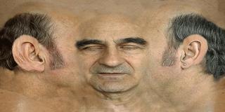 stelarcface