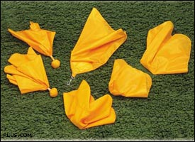 penalty_flag